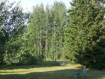 Let's see pictures of your place in Idaho!-100_0395.jpg