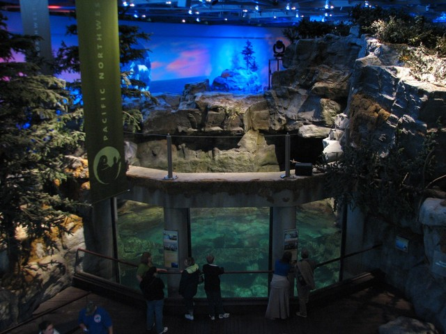 Aquarium in chicago need to know about shedd aquarium Aquarium free days