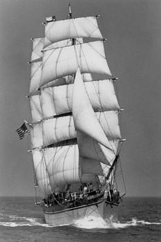 Hello everyone-bows_on_full_sail.jpg