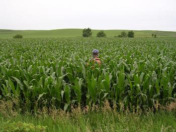 Please give me one good reason to visit Iowa-dscn0941.jpg