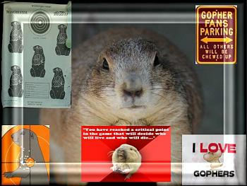Where are all the critters in Montana?-gopher-1299.jpg