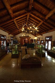 Must SEE to BELIEVE-fishing_bridge_museum_interior_sm.jpg