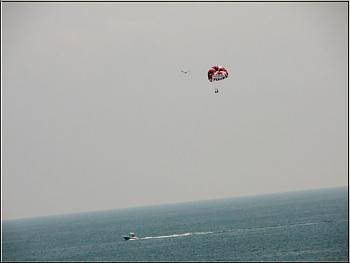 Myrtle Beach-flying-condors.jpg
