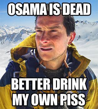 Mideast Reactions to bin Laden's death-osamabear.jpg