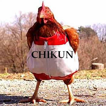 Republicans: We don't need Consumer Financial Protection Bureau-chicken-suit.jpg