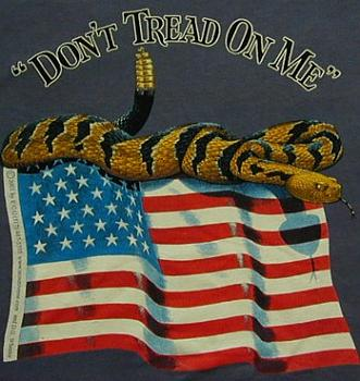 Republicans, this alone should get you to abandon the party-dont-tread-me-flag.jpg