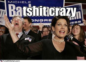Save the Loon!-bachmann-crazy1_43760.jpg