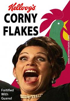 Funny Political Cartoons and Memes-bachmann_flakes.jpg