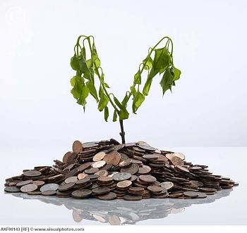Texas healthcare system withering under Perry-withered_plant_on_pile_of_coins.jpg