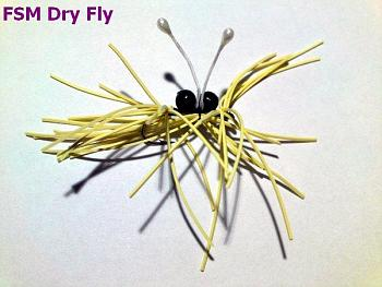 Denying Climate Science-fsm.-dry-fly2.jpg