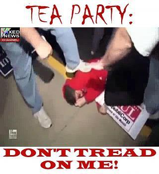 Teacher calls local Tea Party president a Nazi-2202.jpg