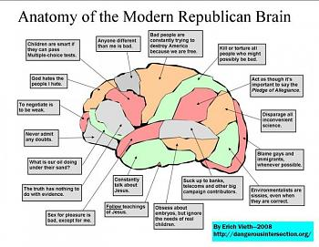 The GOP race and the power of irrational thinking-republican-brain-lo-res.jpg