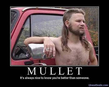The GOP race and the power of irrational thinking-funny-pictures-redneck-mullet.jpg