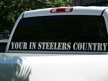 99%-steelers.jpg