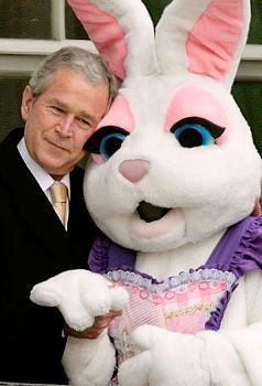 """""""Would you please raise my taxes?""""-dumb-bunny.jpg"""