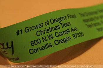Grinch Tax Held Back for This Year-grower-christmas-tree-oregon.jpg