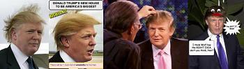 "Trump's Hair on ""Birther"" ticket-tpan.jpg"