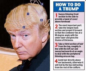 "Trump's Hair on ""Birther"" ticket-t6.jpg"