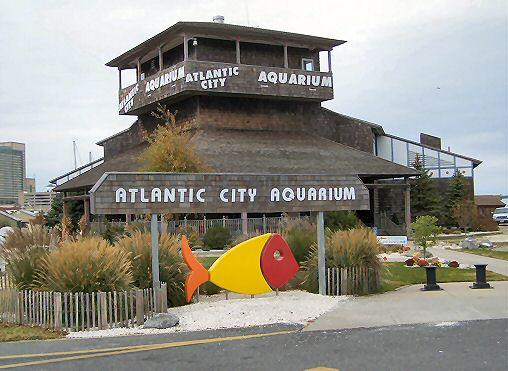 Atlantic City New Jersey Atlantic City Aquarium Photo