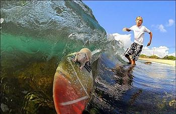 world's top surfers hit New York-mouse5.jpg