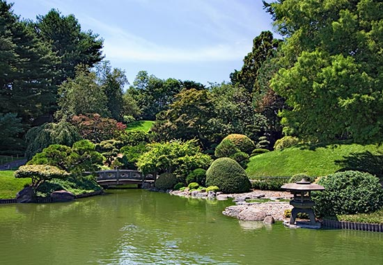 New York, New York: Brooklyn Botanic Garden photo, picture, image
