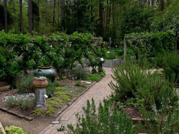North Carolina Botanical Garden Chapel Hill North Carolina