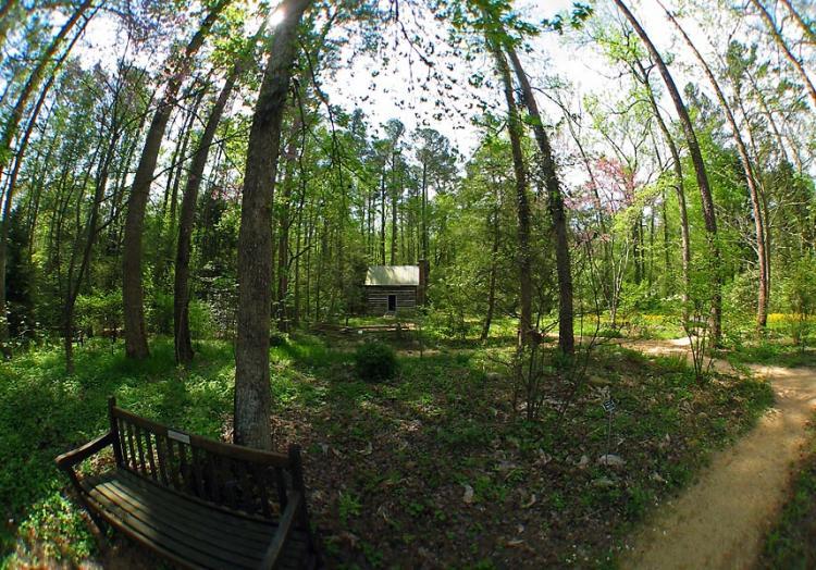 chapel hill north carolina north carolina botanical garden photo picture image
