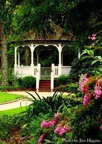 Fayetteville North Carolina Cape Fear Botanical Garden Photo Picture Image