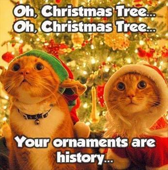Jokes-your-ornaments.jpg