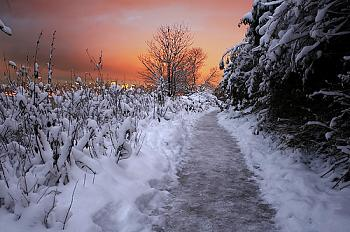 A Night Out on CityProfile - Photo Contest-vancouver-snow.jpg