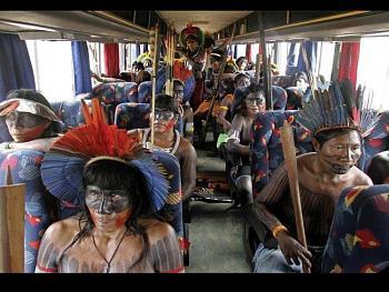 A link of unbelievable photos-bus.jpg