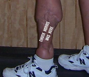 Chuck Norris-legs-norris-3.jpg