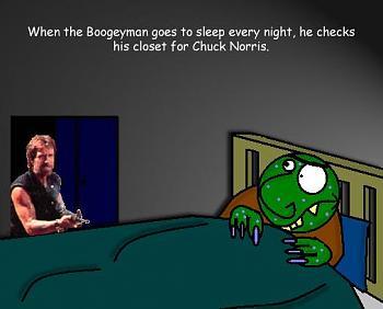 Chuck Norris-funny_chuck_norris-2447.jpg