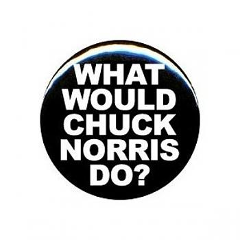 Chuck Norris-what-would-chuck-norris-do-may-23-2011-1-600x600.jpg