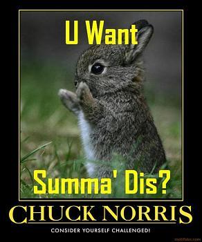 Chuck Norris-chuck-norris-demotivational-poster-1236370959.jpg