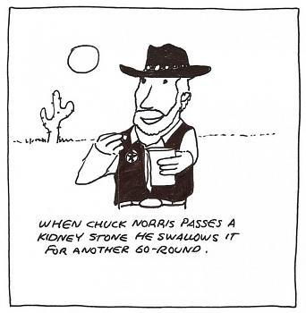 Chuck Norris-berry-cartoon-chuck-083010.jpg