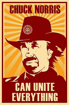 Chuck Norris-chuck_norris_canj_by_peagabassi-1-.jpg