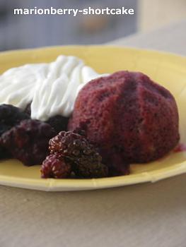 Pie-marionberry-shortcake-2.jpg
