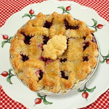 Pie-2010_08_07_1208.jpg