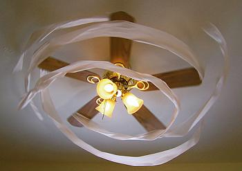 my ceilingfan collection update-383.jpg