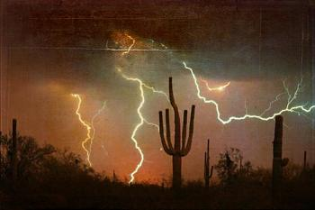How BIG will a SAGUARO get?-saguaro-lightning-storm-600.jpg