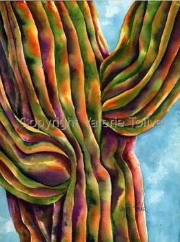 How BIG will a SAGUARO get?-velvet-saguaro.jpg