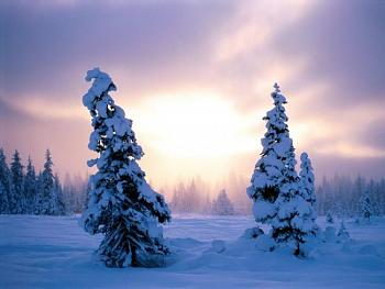 Chill out!  Christmas/Winter in July-new-season-awaits.jpg