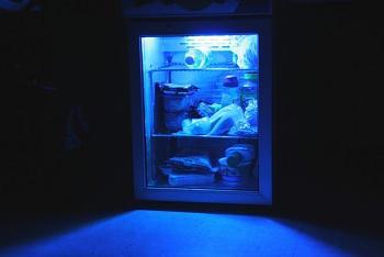 "just ""stuff""-fridge.jpg"