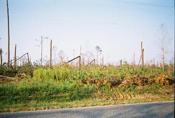 Katrina Hurricane aftermath-katrina4.jpg