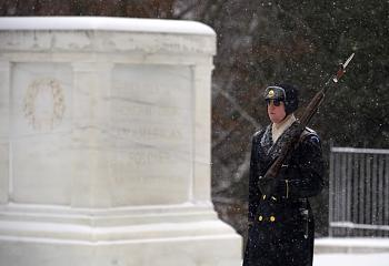 Tomb of the Unknown Soldier-unknowns2.jpg
