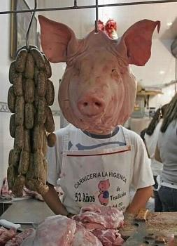 Don't mess with the PIGs!!!-99-pigman.jpg