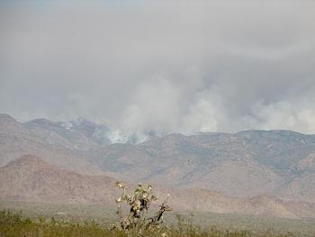random pictures from your camera-hualapai-controlled-burn-023.jpg