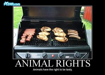 Funny stupid picture thread-animal-rights.jpg