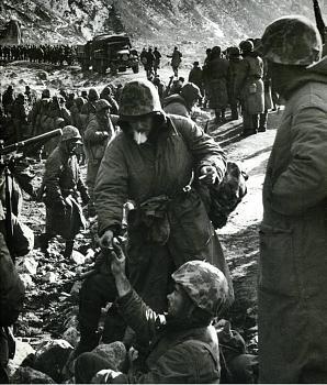 The Forgotten War-350losm.jpg